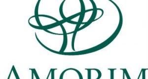 Logo Amorin